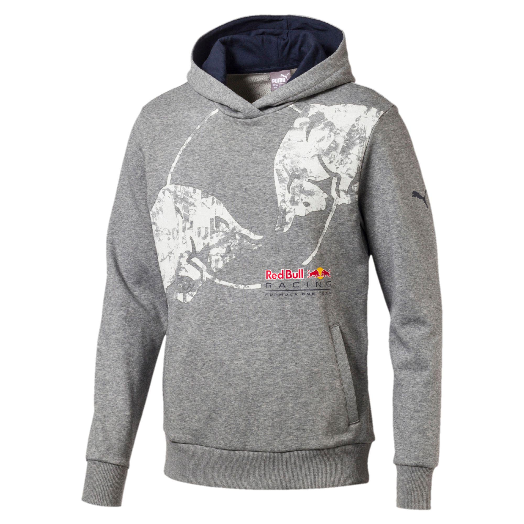 Lifestyle Red Bull Racing Мужские Graphic Hoodie